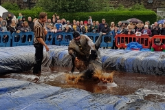 Gravy Wrestling 2018 - Fat Man and the All Black Pudding 2